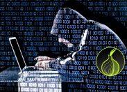 Tor, garanzia di libertà o strumento del crimine online?