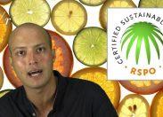 L'olio di palma fa bene o fa male?