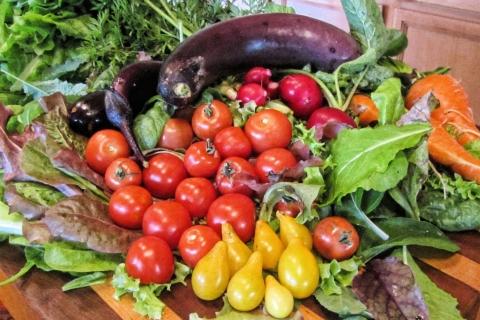 vegetable-621782_1920