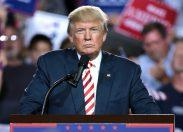 """Usa, la """"transizione"""" Trump: i primi passi del presidente eletto"""