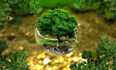 Clima, Forum Greenaccord: ogni anno 700 ambientalisti uccisi