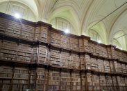 Beni culturali. Database, droni e scanner: il patrimonio mondiale archiviato in 3 dimensioni