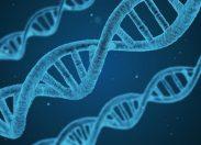 Scienza, il melting pot non è il motore dell'evoluzione