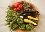 """Dieta vegana, l'esperto: """"Senza vitamina B12 lo sviluppo neurologico dei bambini è a rischio"""""""