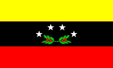 """Venezuela, lo Stato """"strategico"""" di Tachira: tra saccheggi e truppe governative"""