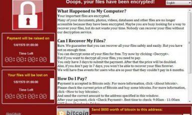 Cyber, maxi attacco hacker mondiale: tra i paesi colpiti anche l'Italia