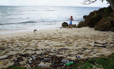 Ambiente, il Mediterraneo è un mare di spazzatura: 60 mila rifiuti presenti