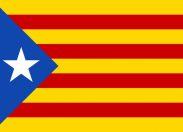 "Catalogna, Madrid ordina arresti. Barcellona: ""Referendum si terrà"""