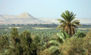 Strage di militari in Egitto: il ricercato numero 1 è un ex ufficiale dell'esercito