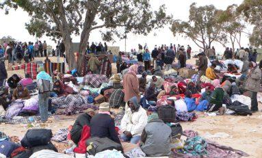 """Immigrati, Unhcr: """"14.500 rifugiati individuati solo nella zona di Sabratha"""""""