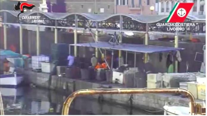 Butta in acqua marinaio irregolare per sfuggire alla Guardia Costiera: arrestato /VIDEO