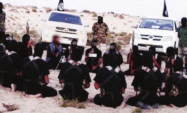 Terrorismo: dopo la caduta dell'Isis proliferano nuovi gruppi jihadisti