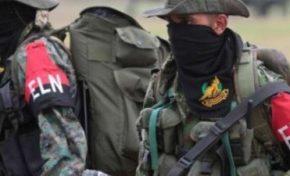 Venezuela, il gruppo di ribelli colombiani tenta alleanza con Maduro