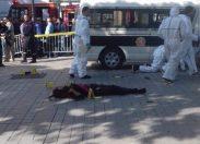 Tunisi: attentato suicida nel centro della Capitale