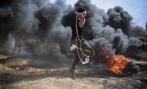 Medio Oriente: Ong con i terroristi e contro Israele