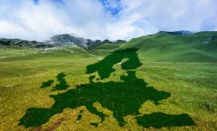 Climate change: il Green new deal all'italiana
