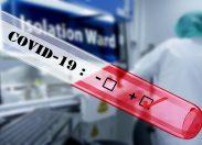Il coronavirus è una pandemia globale