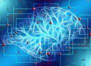 Un nuovo modello di intelligenza artificiale: lo studio italiano